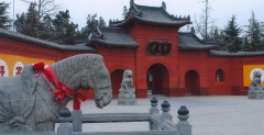 One day private tour to White Horse Temple and  Longmen Grottoes   and  Peony Cultural District