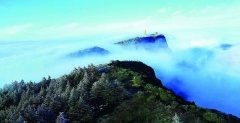 Chengdu Impression 5 day private tour including Mount Emei, Panda Base and Leshan Giant Buddha