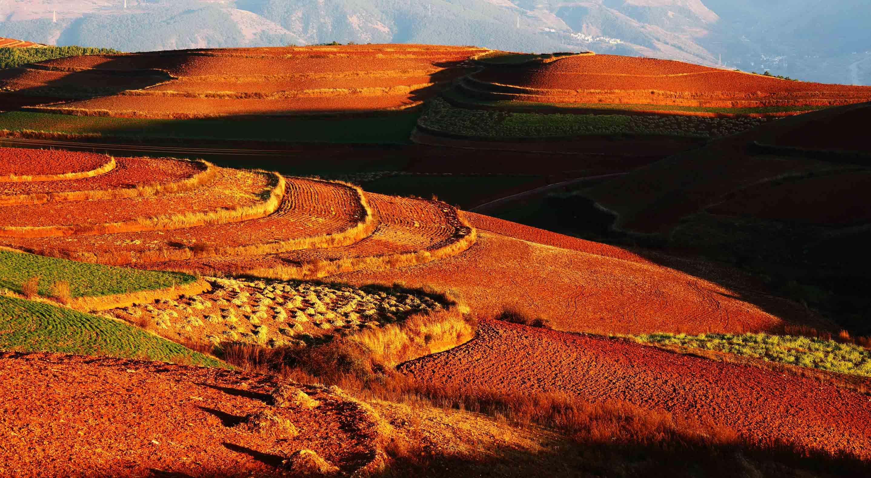 Dongchuan Red Land